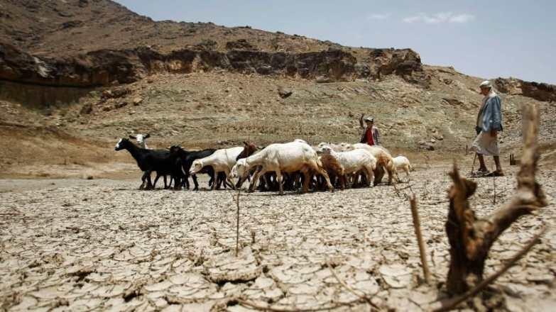 Yemen drougght Haaretz.jpg