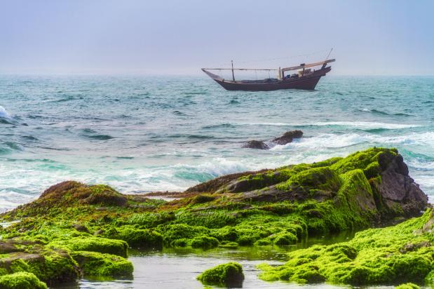 khareef salalah beach